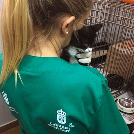Chica con gato negro en los brazos
